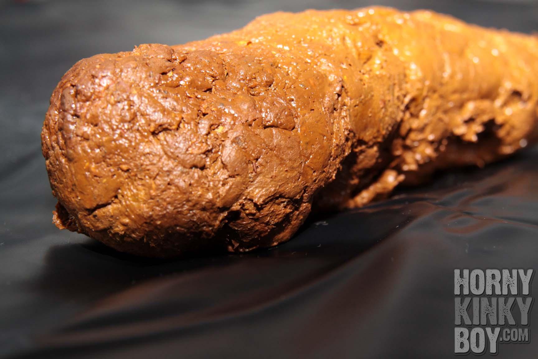 HornyKinkyBoy's Tasty Turd I